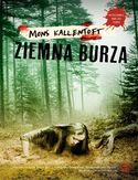 Ebook Malin Fors (#8). Ziemna burza