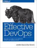Ebook Effective DevOps. Building a Culture of Collaboration, Affinity, and Tooling at Scale