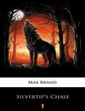 Ebook Silvertips Chase