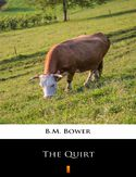 Ebook The Quirt