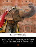 Ebook The Nine Unknown The Red Flame of Erinpura