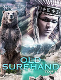 Ebook Old Surehand: tom III