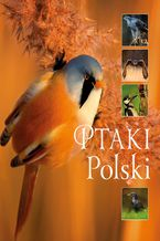 Ptaki Polski_160