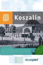 Koszalin i okolice. Miniprzewodnik