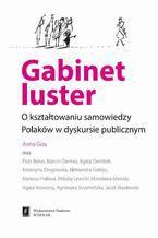 Gabinet luster. O kształtowaniu samowiedzy Polaków w dyskursie publicznym. O kształtowaniu samowiedzy Polaków w dyskursie publicznym