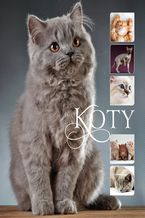 Koty_160