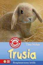 Trusia. Rozpieszczony królik