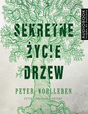 Sekretne życie drzew