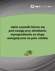 Jakie czynniki bierze się pod uwagę przy określaniu wynagrodzenia za słupy energetyczne na polu rolnika