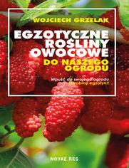 e_1f2l_ebook