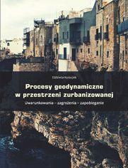 Procesy geodynamiczne w przestrzeni zurbanizowanej. Uwarunkowania - zagrożenia - zapobieganie