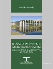 Brazylia w systemie międzynarodowym. Role średniego mocarstwa nowego typu