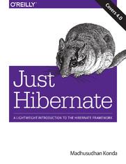 Ok�adka ksi��ki Just Hibernate