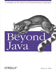 Ok�adka ksi��ki Beyond Java