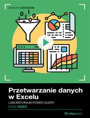 Okładka - Przetwarzanie danych w Excelu. Kurs video. Labo...