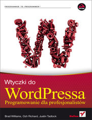 Wtyczki do WordPressa. Programowanie dla profesjonalistów