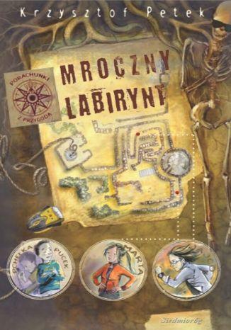 Okładka książki/ebooka Mroczny labirynt