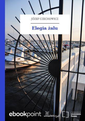 Okładka książki/ebooka Elegia żalu