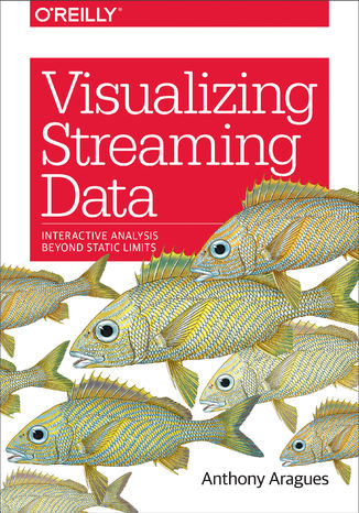 Okładka książki Visualizing Streaming Data. Interactive Analysis Beyond Static Limits