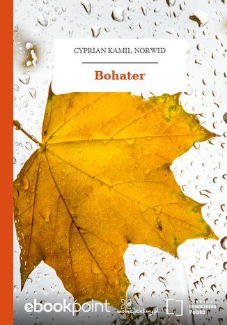 Okładka książki/ebooka Bohater