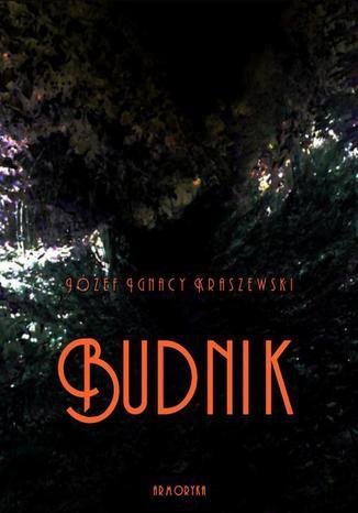 Okładka książki/ebooka Budnik