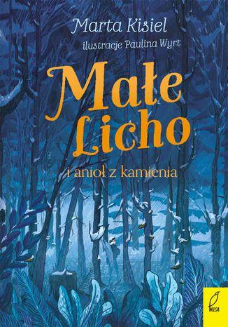 Okładka książki/ebooka Małe Licho i anioł z kamienia