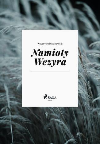 Okładka książki/ebooka Namioty Wezyra