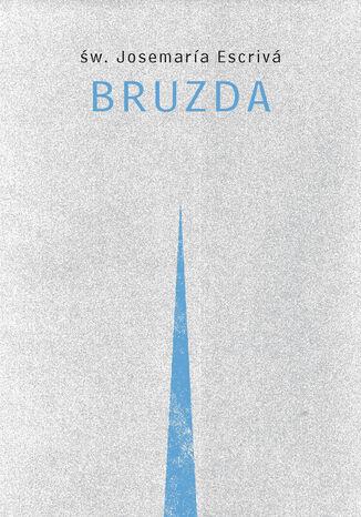 Okładka książki/ebooka Bruzda