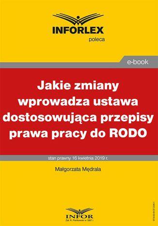 Okładka książki/ebooka Jakie zmiany wprowadza ustawa dostosowująca przepisy prawa pracy do RODO