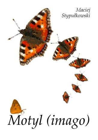 Okładka książki/ebooka Motyl (imago)