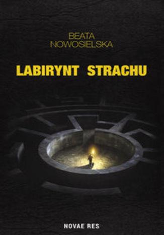 Okładka książki/ebooka Labirynt strachu