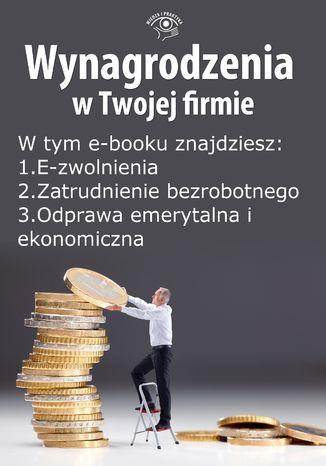 Okładka książki/ebooka Wynagrodzenia w Twojej firmie, wydanie czerwiec 2014 r. część II