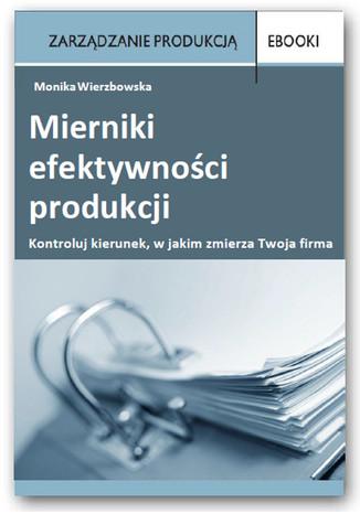 Okładka książki/ebooka Mierniki efektywności produkcji