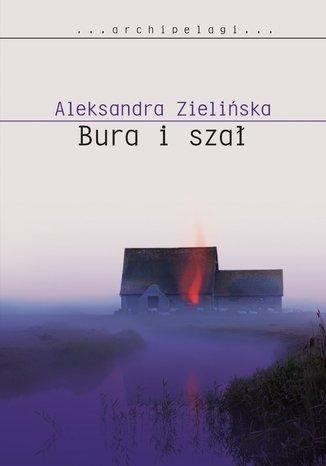 Okładka książki/ebooka Bura i szał