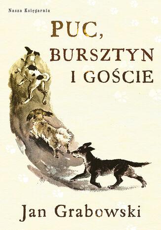 Okładka książki/ebooka Puc Bursztyn i goście