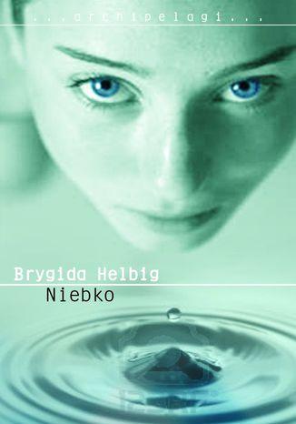 Okładka książki/ebooka Niebko