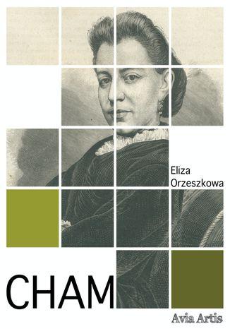Okładka książki/ebooka Cham