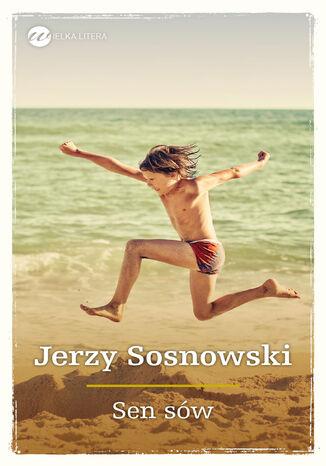 Okładka książki/ebooka Sen sów