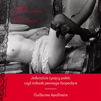 Okładka książki Jedenaście tysięcy pałek, czyli miłostki pewnego hospodara