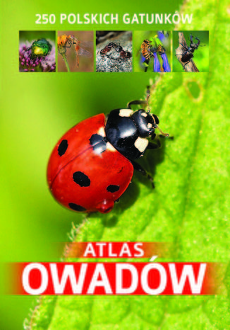 Okładka książki/ebooka Atlas owadów