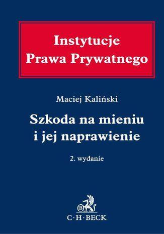 Okładka książki/ebooka Szkoda na mieniu i jej naprawienie. Wydanie 2
