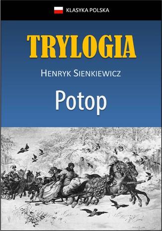 Okładka książki/ebooka Potop