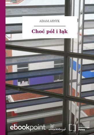 Okładka książki/ebooka Choć pól i łąk