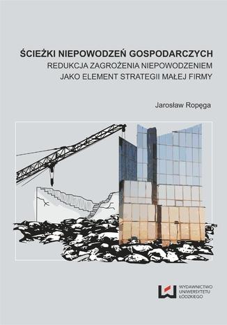 Okładka książki/ebooka Ścieżki niepowodzeń gospodarczych. Redukcja zagrożenia nie-powodzeniem jako element strategii małej firmy