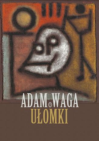 Okładka książki/ebooka Ułomki