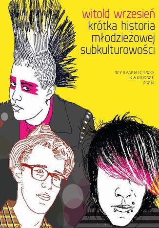 Okładka książki/ebooka Krótka historia młodzieżowej subkulturowości