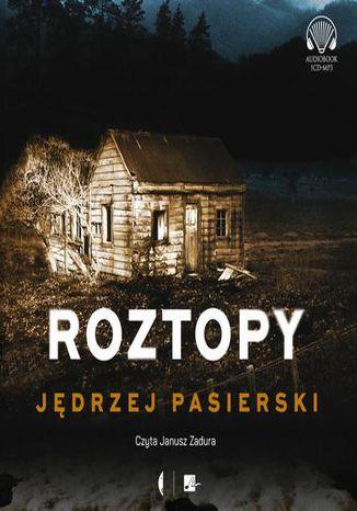 Okładka książki/ebooka Roztopy
