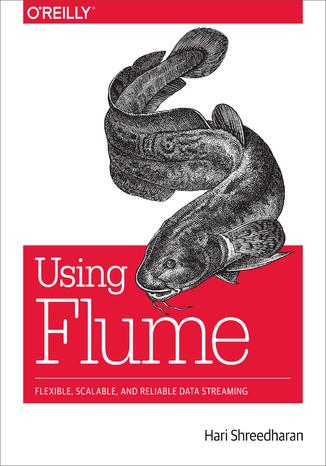 Okładka książki Using Flume. Flexible, Scalable, and Reliable Data Streaming