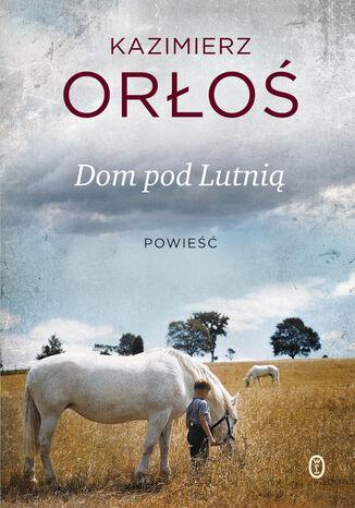 Okładka książki/ebooka Dom pod Lutnią