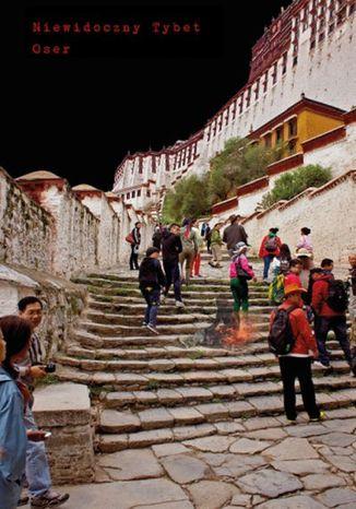 Okładka książki/ebooka Niewidoczny Tybet